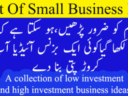 small business ideas in Pakistan