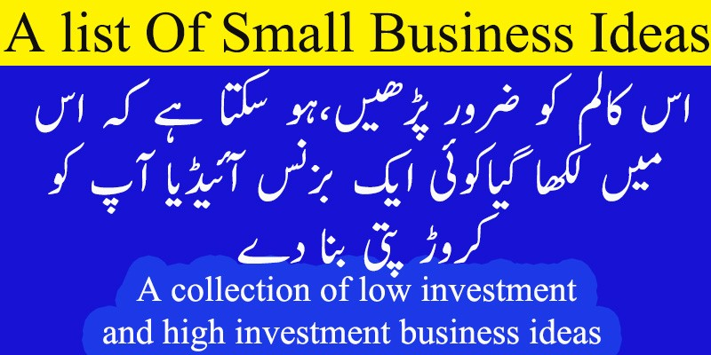 business plan with low investment in pakistan