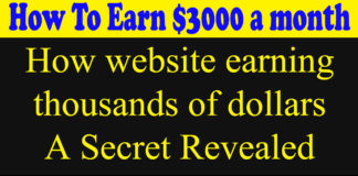 how to earn from website by Usman Ali Support